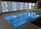 celosias para jardines y piscinas